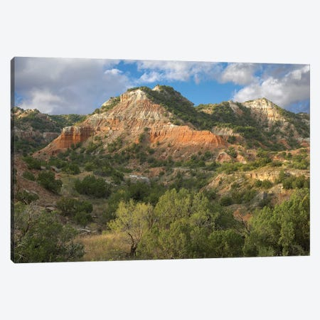 Sandstone Mountains, Palo Duro Canyon State Park, Texas Canvas Print #TFI965} by Tim Fitzharris Canvas Wall Art