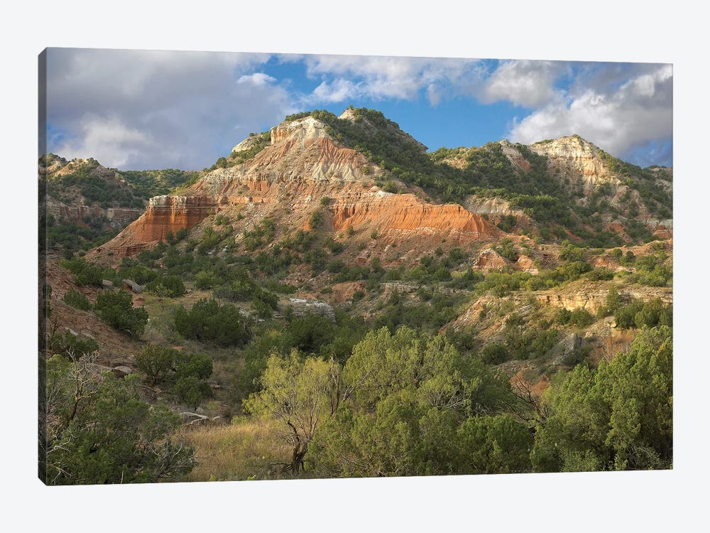 Sandstone Mountains, Palo Duro Canyon State Park, Texas by Tim Fitzharris 1-piece Canvas Art Print