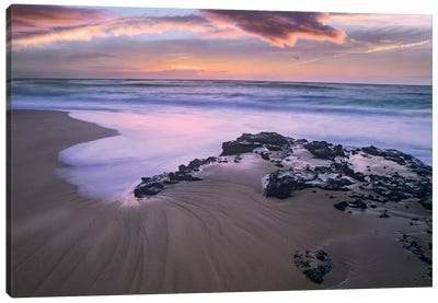 Sandy Beach, Oahu, Hawaii Canvas Art Print