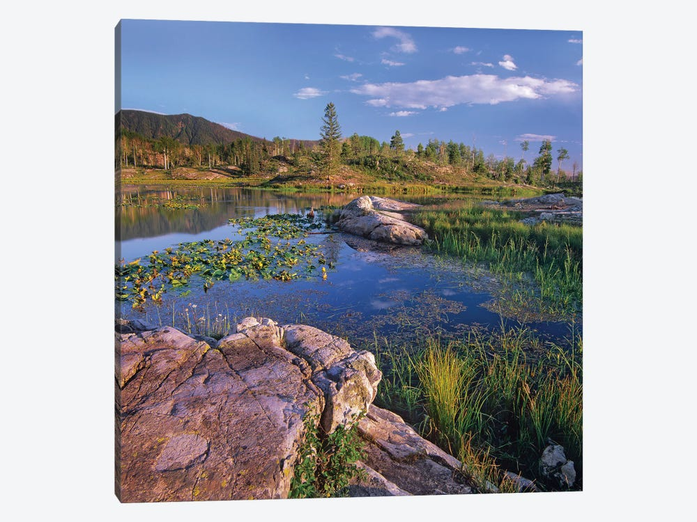 Scout Lake, San Juan Mountains, Colorado 1-piece Canvas Art