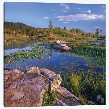 Scout Lake, San Juan Mountains, Colorado Canvas Print #TFI979} by Tim Fitzharris Canvas Wall Art