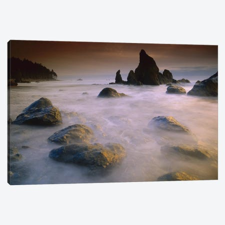 Sea Stack And Rocks Along Shoreline At Ruby Beach, Olympic National Park, Washington Canvas Print #TFI985} by Tim Fitzharris Canvas Wall Art
