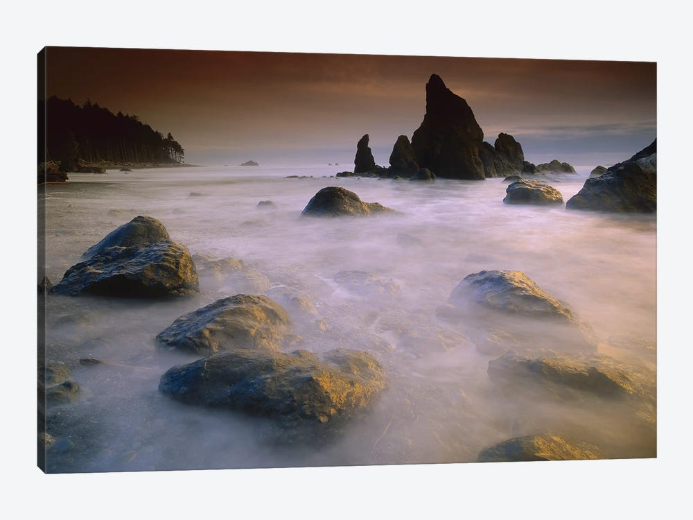 Sea Stack And Rocks Along Shoreline At Ruby Beach, Olympic National Park, Washington by Tim Fitzharris 1-piece Art Print