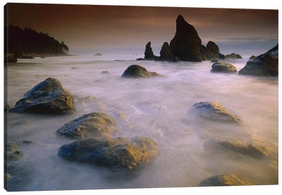 Sea Stack And Rocks Along Shoreline At Ruby Beach, Olympic National Park, Washington Canvas Art Print