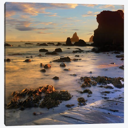 Seastacks, Lone Ranch Beach, Oregon Canvas Print #TFI988} by Tim Fitzharris Canvas Art Print