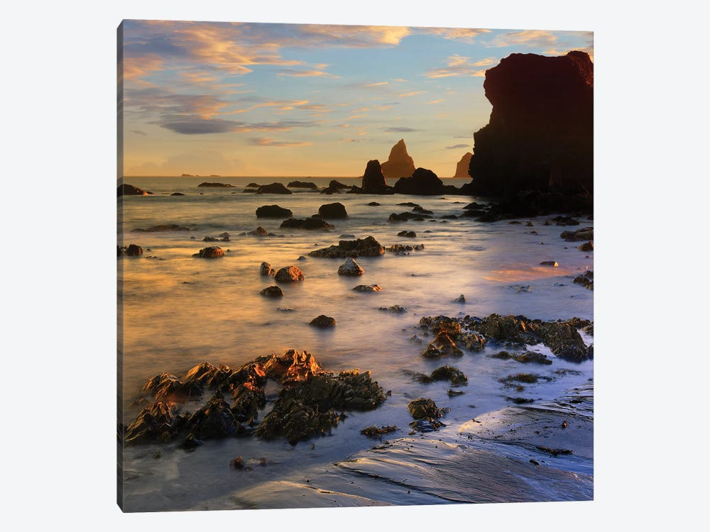 Seastacks, Lone Ranch Beach, Oregon by Tim Fitzharris 1-piece Canvas Art