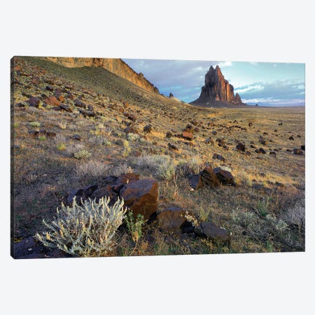 Shiprock, The Basalt Core Of An Extinct Volcano, New Mexico I Canvas Print #TFI992} by Tim Fitzharris Canvas Art