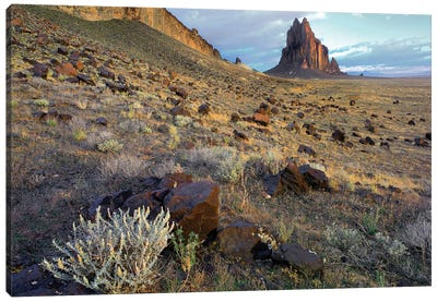 Shiprock, The Basalt Core Of An Extinct Volcano, New Mexico I Canvas Art Print