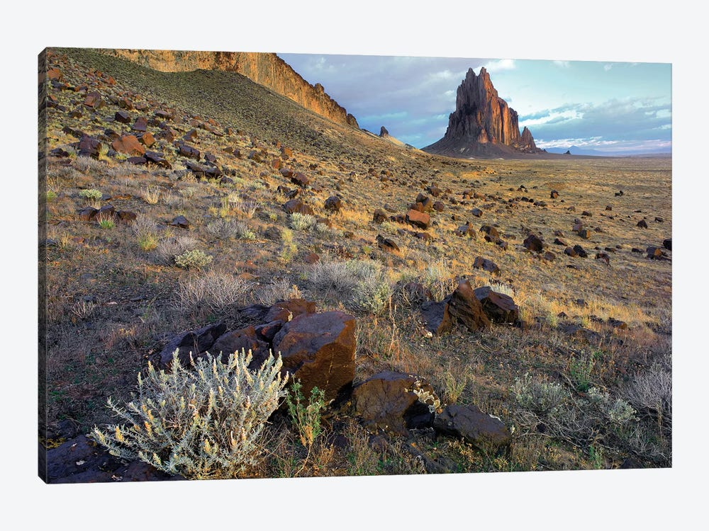 Shiprock, The Basalt Core Of An Extinct Volcano, New Mexico I by Tim Fitzharris 1-piece Canvas Art Print