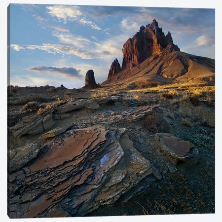 Shiprock, The Basalt Core Of An Extinct Volcano, New Mexico III Canvas Print #TFI994} by Tim Fitzharris Canvas Print