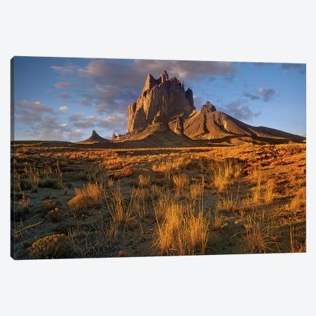 Shiprock, The Basalt Core Of An Extinct Volcano, New Mexico V Canvas Print #TFI996} by Tim Fitzharris Art Print