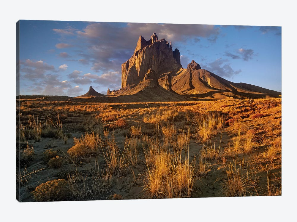 Shiprock, The Basalt Core Of An Extinct Volcano, New Mexico V by Tim Fitzharris 1-piece Canvas Print