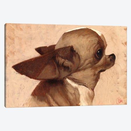 Profile-Chihuahua Canvas Print #TFL11} by Thomas Fluharty Canvas Art