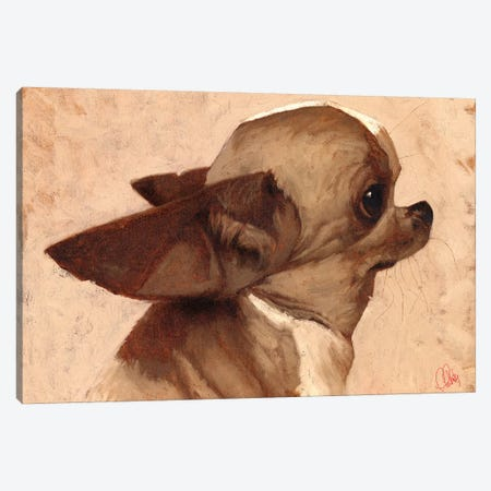 Profile-Chihuahua 3-Piece Canvas #TFL11} by Thomas Fluharty Canvas Art