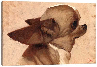 Profile-Chihuahua Canvas Art Print