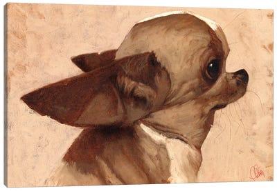 Profile-Chihuahua Canvas Art Print
