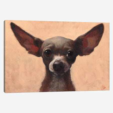 Chihuahua 3-Piece Canvas #TFL6} by Thomas Fluharty Canvas Artwork