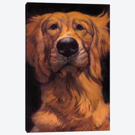 Golden Canvas Print #TFL8} by Thomas Fluharty Canvas Print