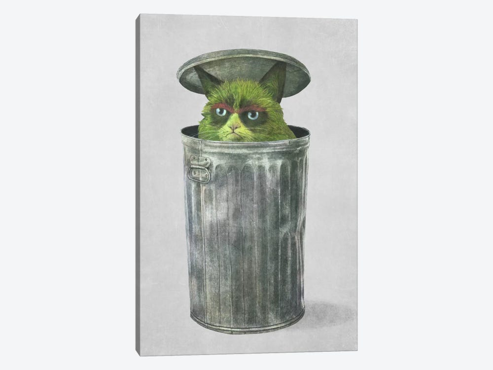 Grouchy Cat by Terry Fan 1-piece Canvas Art Print