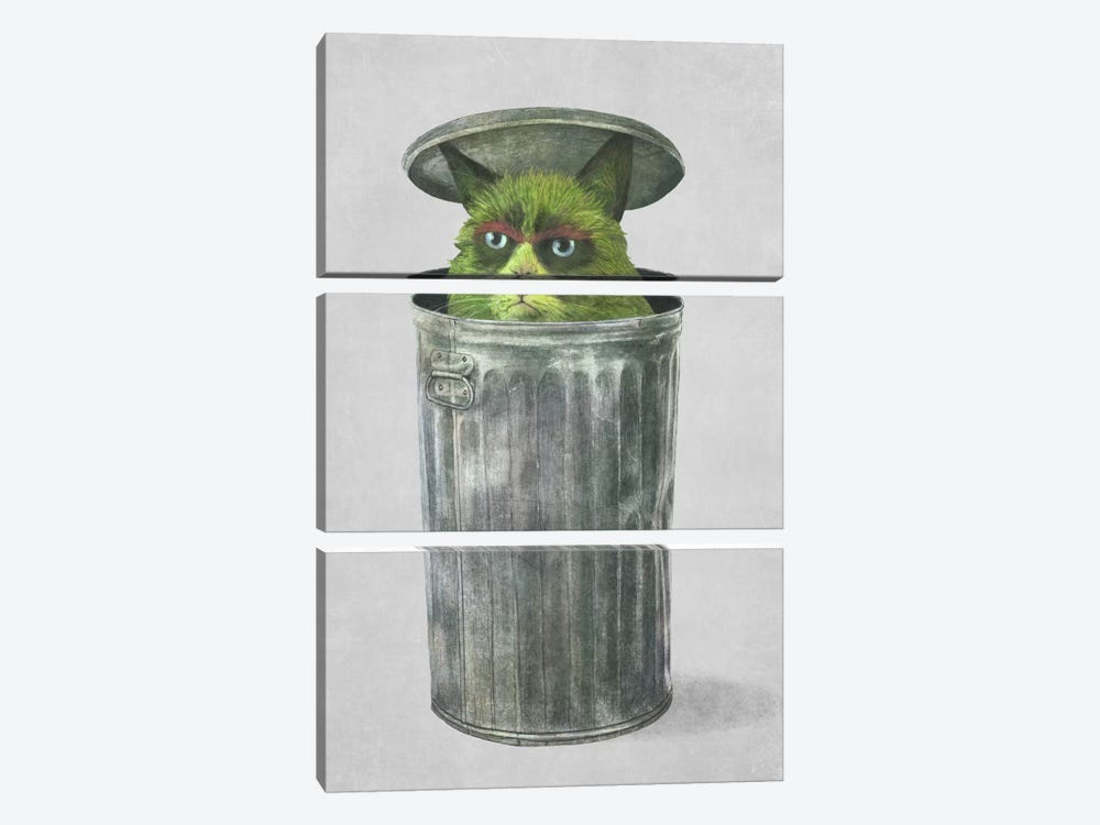 Grouchy Cat by Terry Fan 3-piece Canvas Art Print