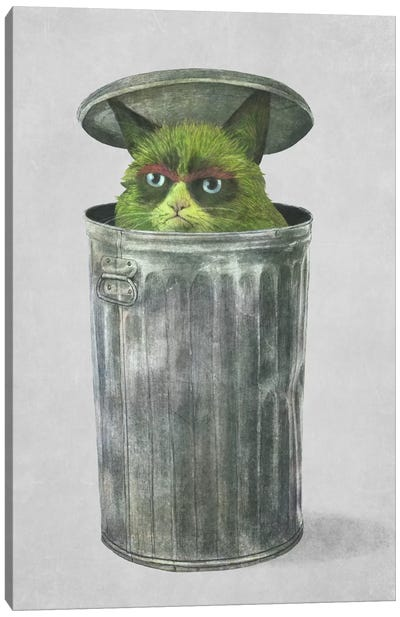 Grouchy Cat Canvas Art Print