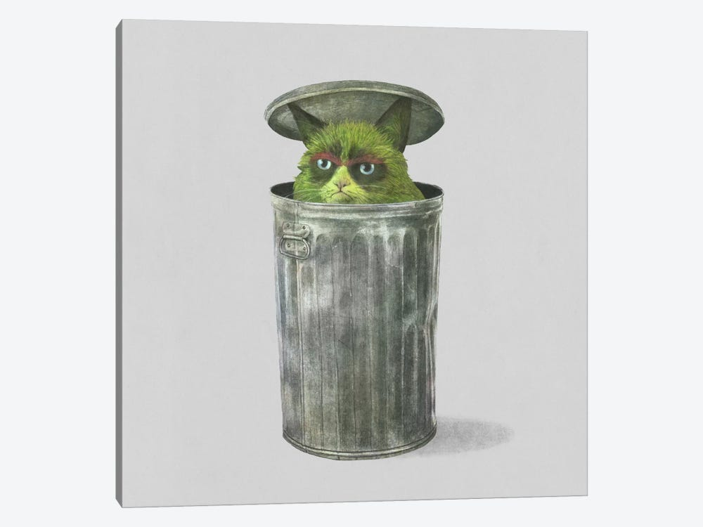 Grouchy Cat Square by Terry Fan 1-piece Canvas Art