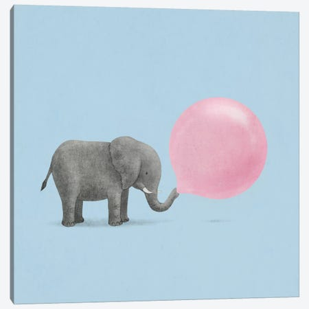 Jumbo Bubble Gum Blue Square Canvas Print #TFN114} by Terry Fan Canvas Wall Art