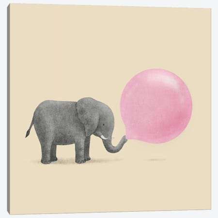 Jumbo Bubble Gum Square Canvas Print #TFN115} by Terry Fan Canvas Art