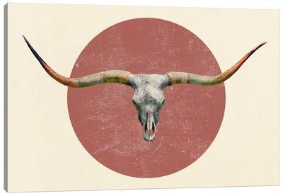 Longhorn Canvas Print #TFN118