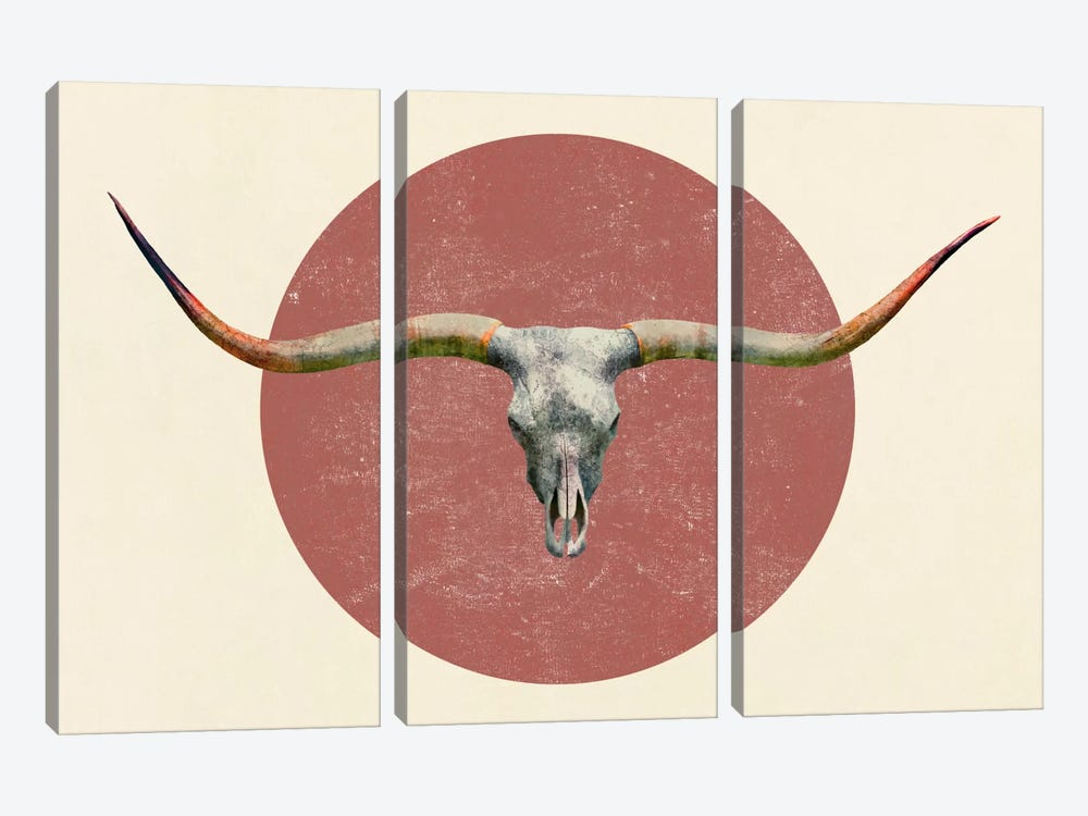 Longhorn by Terry Fan 3-piece Canvas Art