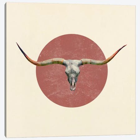 Longhorn Square Canvas Print #TFN119} by Terry Fan Art Print