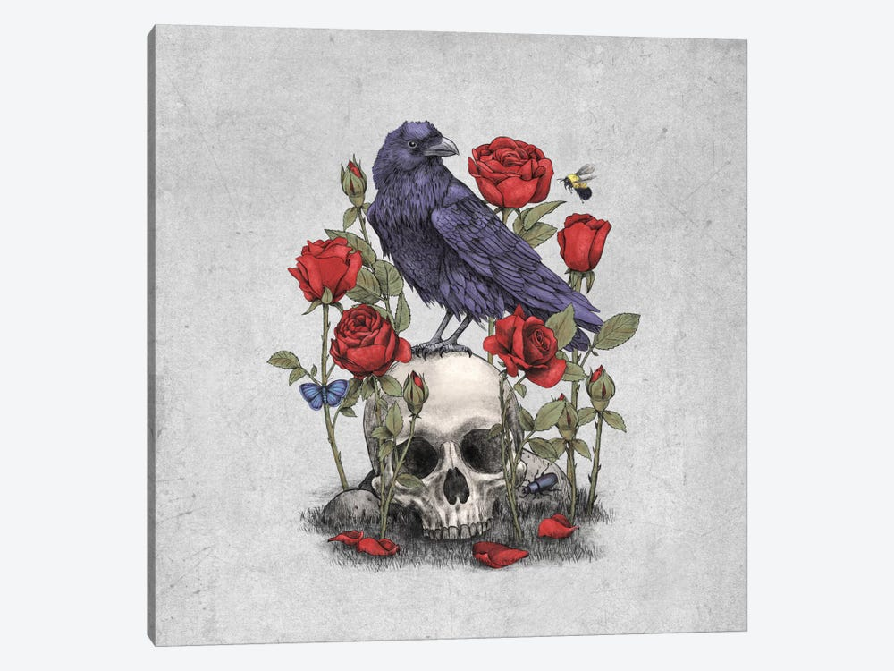 Memento Mori Square by Terry Fan 1-piece Canvas Art