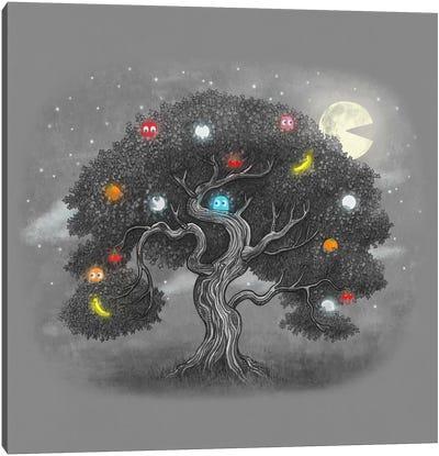 Midnight Snack Square Canvas Art Print