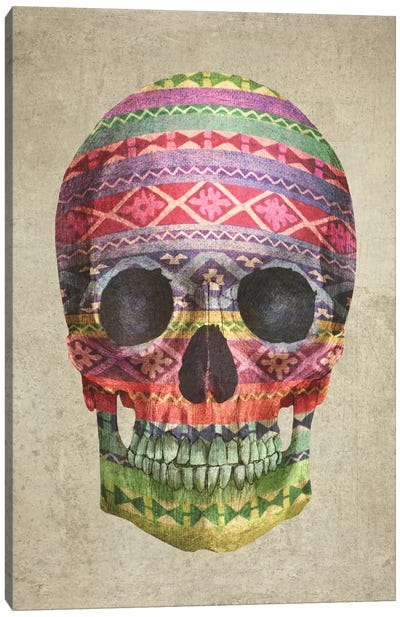 Navajo Skull Canvas Print #TFN137