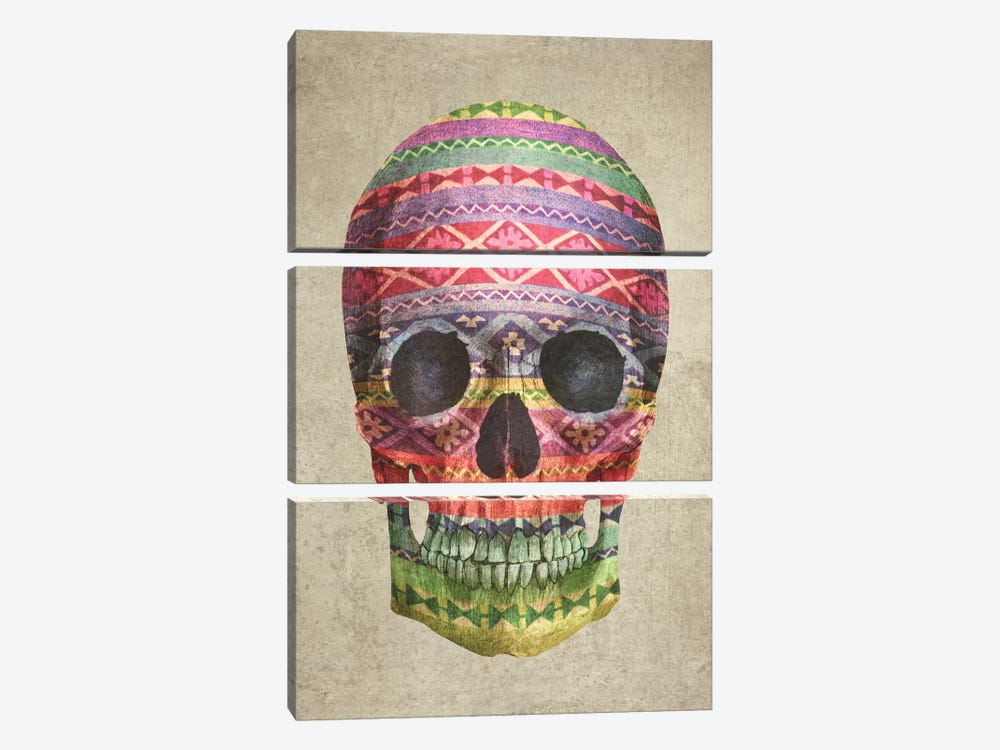 Navajo Skull by Terry Fan 3-piece Canvas Art Print