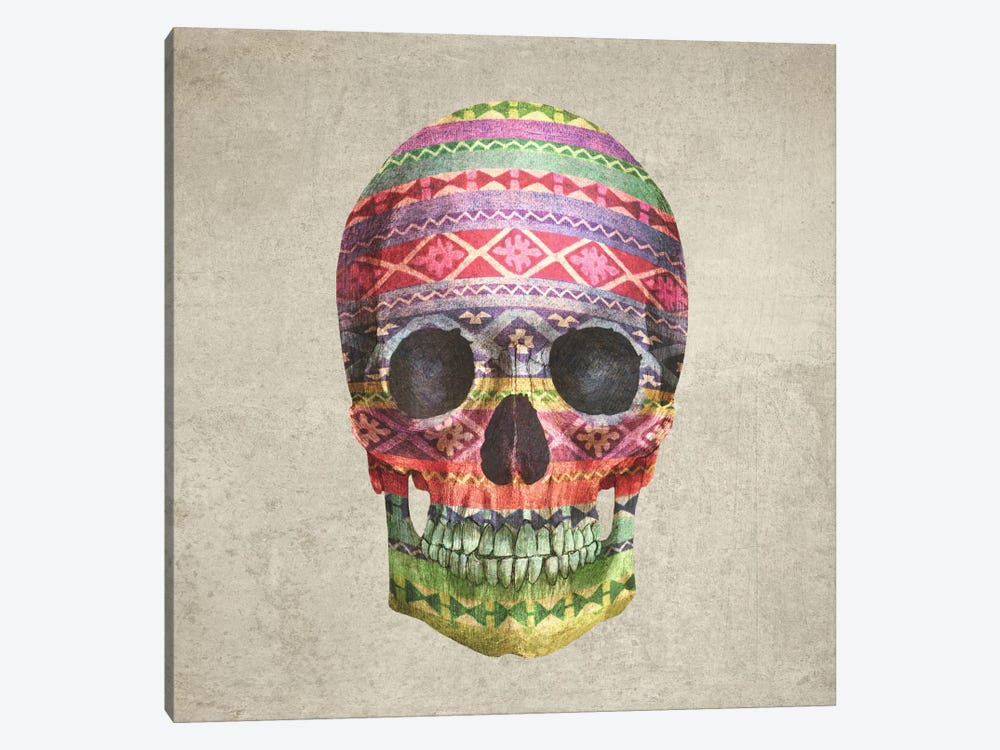 Navajo Skull Square by Terry Fan 1-piece Canvas Art