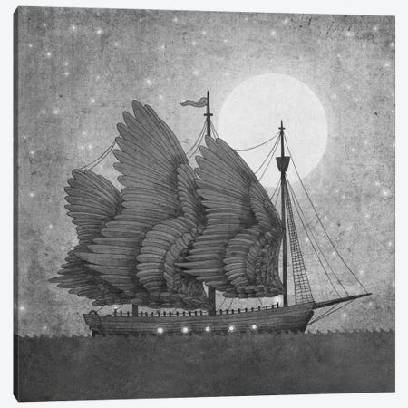 Night Odyssey Square Canvas Print #TFN142} by Terry Fan Canvas Artwork