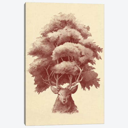 Old Growth Canvas Print #TFN149} by Terry Fan Canvas Artwork