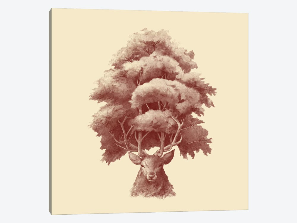 Old Growth Square by Terry Fan 1-piece Canvas Artwork