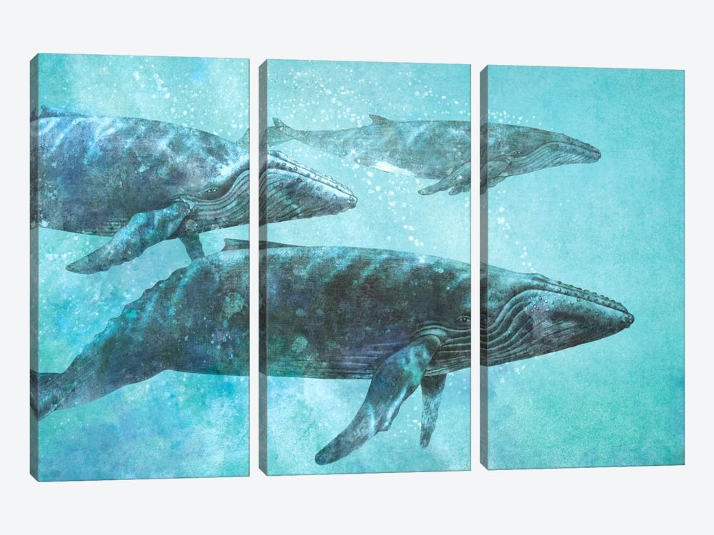 Pod by Terry Fan 3-piece Canvas Art Print