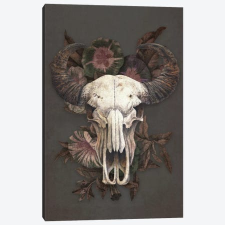 Roam Canvas Print #TFN166} by Terry Fan Canvas Print