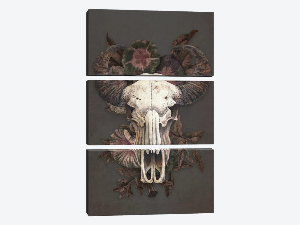 Roam 3-piece Canvas Print