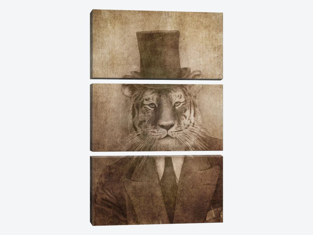 Sir Tiger by Terry Fan 3-piece Canvas Art
