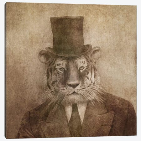 Sir Tiger Square Canvas Print #TFN177} by Terry Fan Canvas Artwork