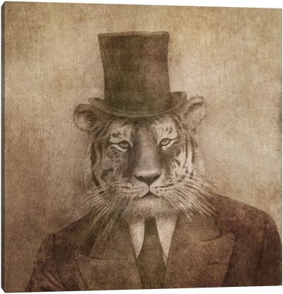 Sir Tiger Square Canvas Art Print
