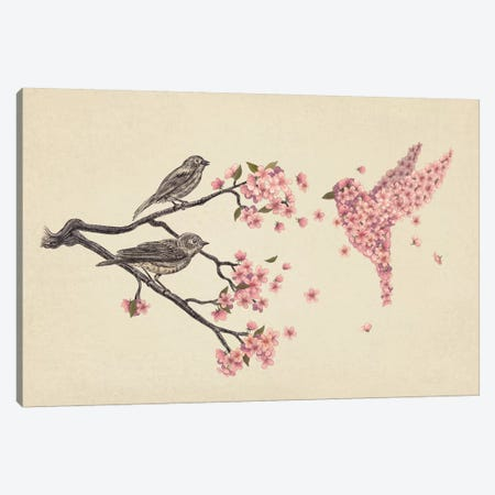 Blossom Bird Canvas Print #TFN17} by Terry Fan Art Print