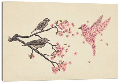 Blossom Bird Canvas Art Print