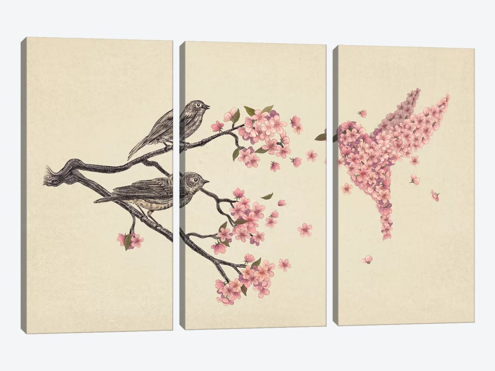 Blossom Bird by Terry Fan 3-piece Art Print