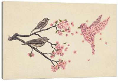 Blossom Bird Canvas Art Print