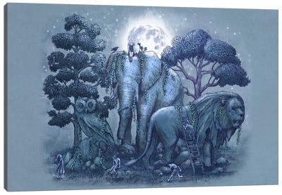 Stone Garden Canvas Print #TFN187